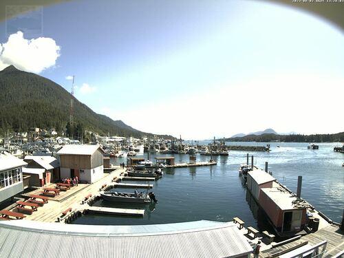 Current Ketchikan Webcam 6 photo